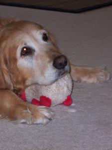 Ella in 2008